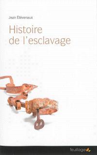 Histoire de l'esclavage : les Européens, les Arabes et les autres