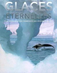Glaces éternelles : à la découverte de l'immensité des régions polaires