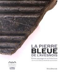 La pierre bleue de l'Avesnois : entre paysage et architecture, collections du Forum antique de Bavay