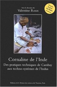Cornaline de l'Inde : des pratiques techniques de Cambay aux techno-systèmes de l'Indus