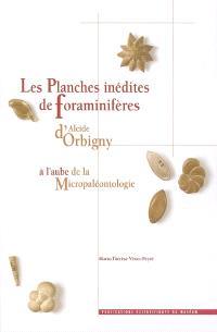 Les planches inédites de foraminifères d'Alcide d'Orbigny : à l'aube de la micropaléontologie = The unpublished plates of foraminifera by Alcide d'Orbigny : the dawn of micropaleontology