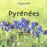 Pyrénées : agenda 2010