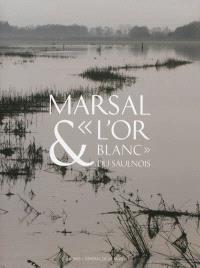 Marsal & l'or blanc du Saulnois : le Musée départemental du sel de Marsal