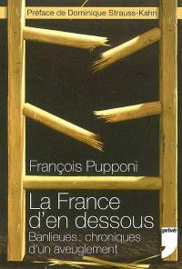La France d'en dessous : banlieues, chroniques d'un aveuglement