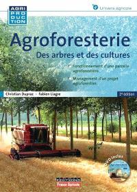 Agroforesterie : des arbres et des cultures