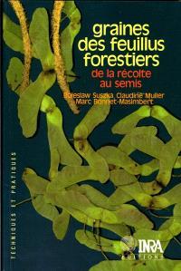 Graines des feuillus forestiers : de la récolte au semis