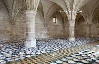 Régis Perray : l'abbaye fleurie : exposition, Saint-Ouen-l'Aumône, Abbaye de Maubuisson, du 4 octobre 2015 au 26 juin 2016