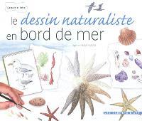 Le dessin naturaliste en bord de mer