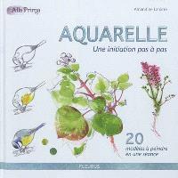 Aquarelle : une initiation pas à pas : 20 modèles à peindre en une séance