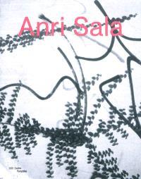 Anri Sala : exposition, Paris, Centre Pompidou, Galerie Sud, du 3 mai au 6 août 2012