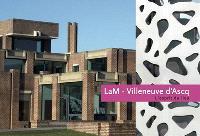LaM, Villeneuve-d'Ascq