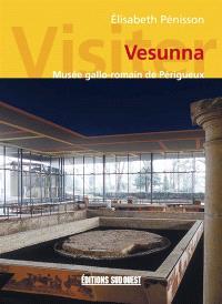 Visiter Vesunna : Musée gallo-romain de Périgueux