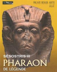 Sésostris III, pharaon de légende : exposition, Lille, Palais des beaux-arts, du 10 octobre 2014 au 26 janvier 2015
