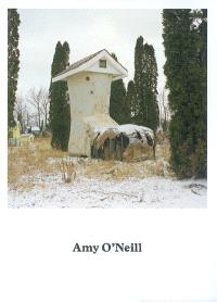 Amy O'Neill, Suburban imagination