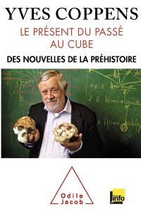 Le présent du passé au cube : des nouvelles de la préhistoire