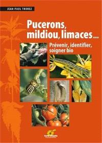 Pucerons, mildiou, limaces... : prévenir, identifier, soigner bio
