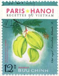 Paris Hanoi : recettes traditionnelles & familiales vietnamiennes