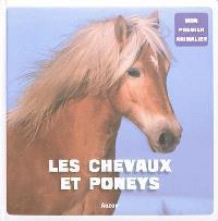Les chevaux et poneys
