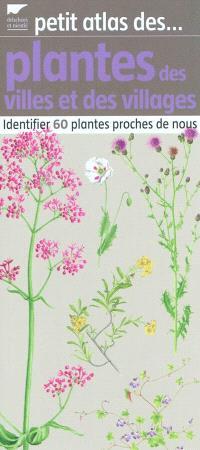 Petit atlas des plantes des villes et des villages : identifier 60 plantes proches de nous