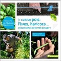 Je cultive pois, fèves, haricots... : des protéines dans mon potager !
