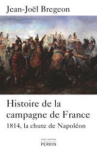 Histoire de la campagne de France : 1814, la chute de Napoléon