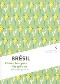 Brésil : dans les pas du géant