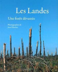 Les Landes : une forêt dévastée
