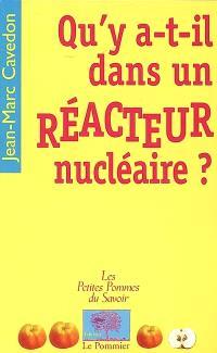 Qu'y a-t-il dans un réacteur nucléaire ?