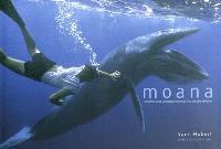 Moana : rencontre avec la biodiversité sous-marine polynésienne