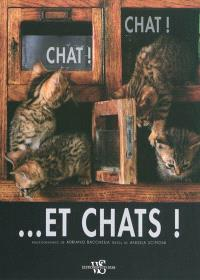 Chat ! Chat et... chats !