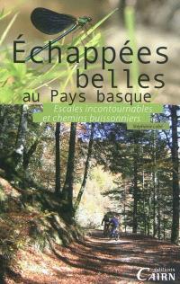 Echappés belles au Pays basque : escales incontournables et chemins buissonniers