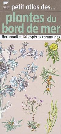 Petit atlas des plantes du bord de mer : reconnaître 60 espèces communes