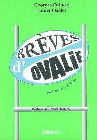 Brèves d'Ovalie, Perles en mêlée