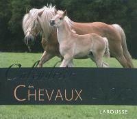 Calendrier des chevaux 2012 : 52 magnifiques portraits de chevaux pour vous accompagner tout au long de l'année 2012