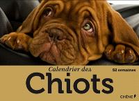 Calendrier des chiots : 52 semaines