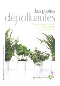 Les plantes dépolluantes : purifier l'air de la maison ou du bureau avec des plantes