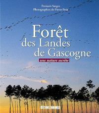 Forêt des Landes de Gascogne : une nature secrète