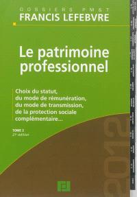 Le patrimoine professionnel. Volume 2, Choix du statut, du mode de rémunération, du mode de transmission, de la protection sociale complémentaire...