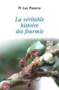 La véritable histoire des fourmis