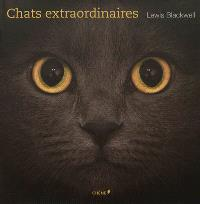 Chats extraordinaires
