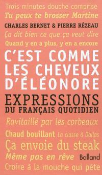 C'est comme les cheveux d'Eléonore : expressions du française quotidien