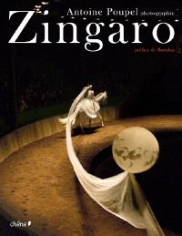 Zingaro : la passion de Bartabas