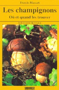 Les champignons : où et quand les trouver