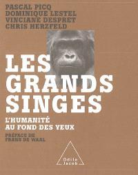 Les grands singes : l'humanité au fond des yeux