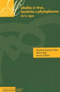 Les maladies à virus, bactéries et phytoplasmes de la vigne