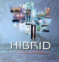Hibrid : regards croisés sur la peinture contemporaine en France = An exchange of views on contemporary painting in France