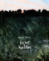 Jean-C. Denis, bois brut & herbes folles : exposition, Paris, Galerie Oblique, du 1er au 18 octobre 2014