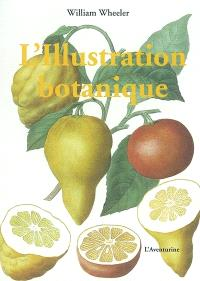 L'illustration botanique