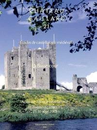 Château-Gaillard : études de castellologie médiévale. Volume 21, La basse-cour : actes du colloque international de Maynooth (Irlande), 23-30 août 2002