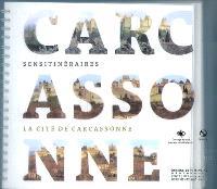 Carcassonne : la cité de Carcassonne